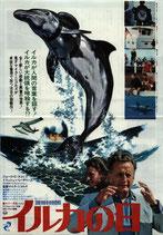 イルカの日(帝国座/チラシ洋画)