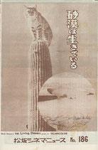 砂漠は生きている(米・映画・松坂シネマ・ニュース/プログラム)
