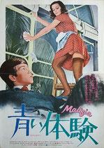 青い体験(伊・米合作映画/プレスシート)