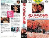 恋人たちの予感(ビデオレンタル用・チラシ洋画)