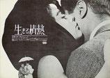 生きる情熱(アメリカ映画/プレスシート)