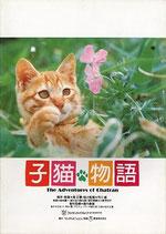 子猫物語(邦画パンフレット)