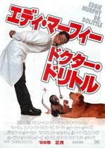 エディ・マーフィー ドクター・ドリトル(チラシ洋画)