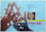 真夜中の青春(アメリカ映画/プレスシート)