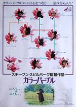 カラーパープル(タイトル下)(洋画ポスター)