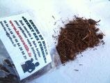 Encens base Eucalyptus : 5 déclinaisons à essayer pour purifier votre intérieur!