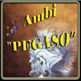 Ambi Pegaso