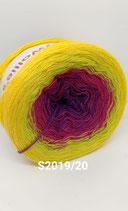 Wollie - S2019/20