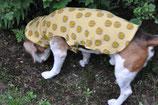 E-Book/ Schnittmuster Hundepulli KINDO (Einzelgröße: klein bis mittelgroß)