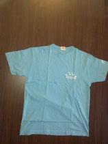 """t-shirt homme """"IDDC2009"""" bleu"""