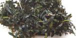 bucephalandra biblis mini