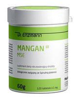 Mangan MSE