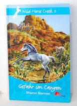 Buch - GEfahr im Canyon