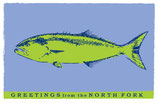 NC 009 Green Fish/Custom Option Note Cards 8 Pack