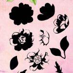 Studio Light Clear Layered Stamps Blumen 4 Anemone