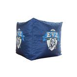 EVZ Easy Cube