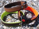 RH-K-Click-Halsband für kleine und mittlere Hunde!