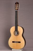 ギター ER-50