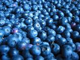 Blueberry Flavor Oil