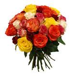 bunt-gemischte Rosen (60cm)