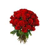 rote Rosen (70cm)