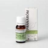 プラナロム タイム・ツヤノール 10ml Thymus vulgaris CT(Thujanol)  ケモタイプ 精油 エッセンシャルオイル アロマオイル ケンソー 健草医学舎