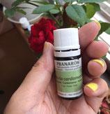 プラナロム カルダモン 5ml Elettaria cardamomum  ケモタイプ 精油 エッセンシャルオイル アロマオイル ケンソー 健草医学舎