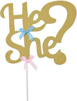 Cake Topper - He or She ? -