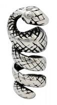 Schlange - ap6