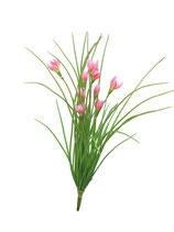 Ornythogalum-Busch pink 43 cm