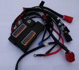 Fahrelektronik Dynamic Rhino 2 160A komplett mit Kabel