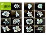 中級基礎季節の花セット