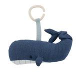 Spieluhr Marion der Wal