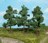 4 Obstbäume, 8-12 cm 1164
