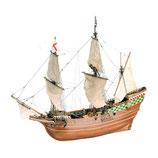 22451 Mayflower