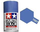 Ts 57 Violett Blauw