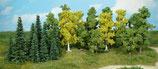 Mischwald 26 Bäume und Tannen 5-11 cm 1230