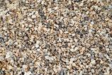 Muschelgrit 3-5 mm, Einzelfuttermittel