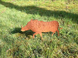 Edelrost Warzenschwein