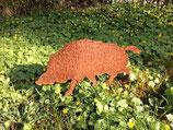 Edelrost Wildschwein