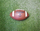 BIG GAME OFFICIAL  BALL