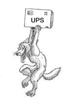 UPS Abholauftrag Paket