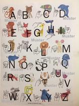 Plakat DIN A1 Fingeralphabet - von Deborah Lang
