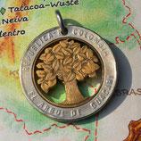 Kolumbien Baum