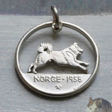 Norwegen Husky