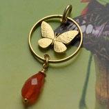 Philippinen Schmetterling mit Stein