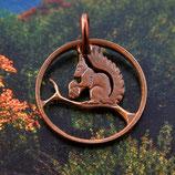Norwegen Eichhörnchen