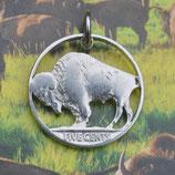 USA Buffalo-Nickel