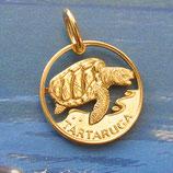 Kapverden Schildkröte