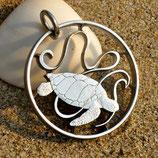 Seychellen Meeresschildkröte